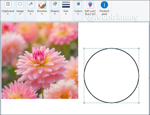 Vẽ hình tròn
